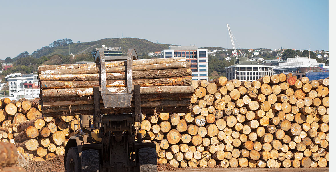 vehicle carrying pile of logs at a port