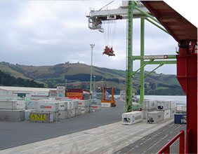 Port Otago terminal view out to the ocean.